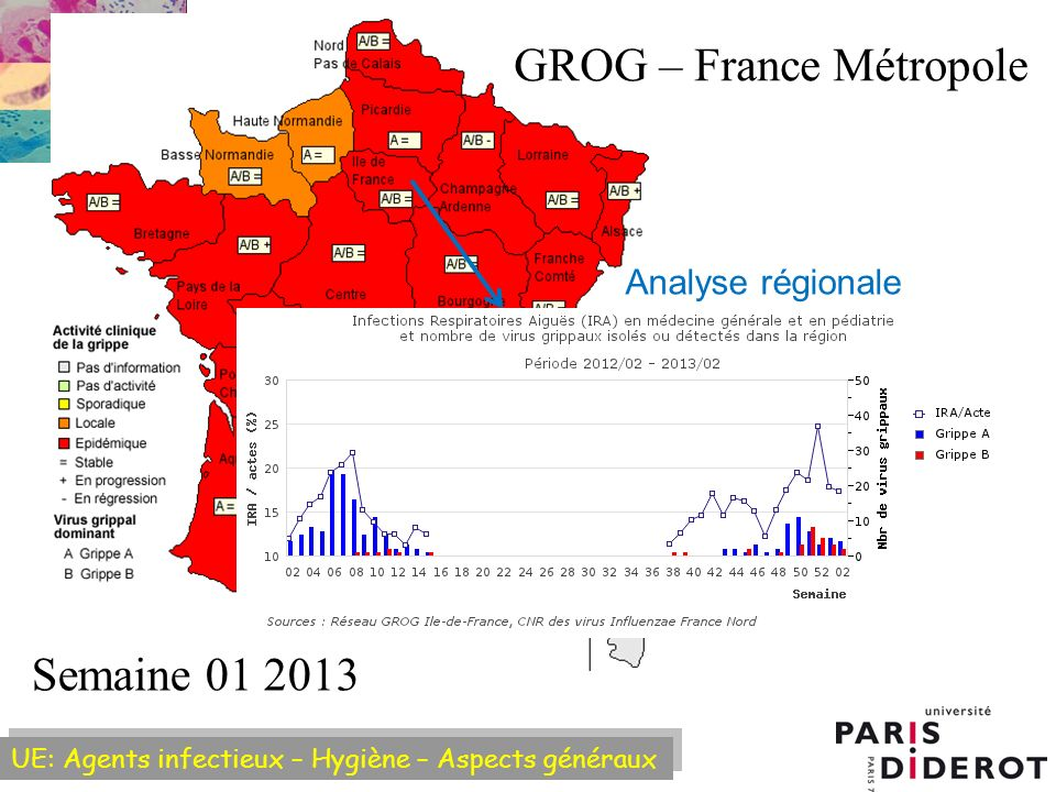 GROG – France Métropole