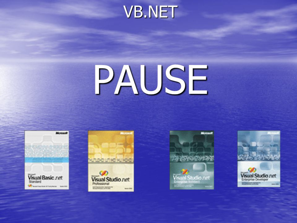 VB.NET PAUSE