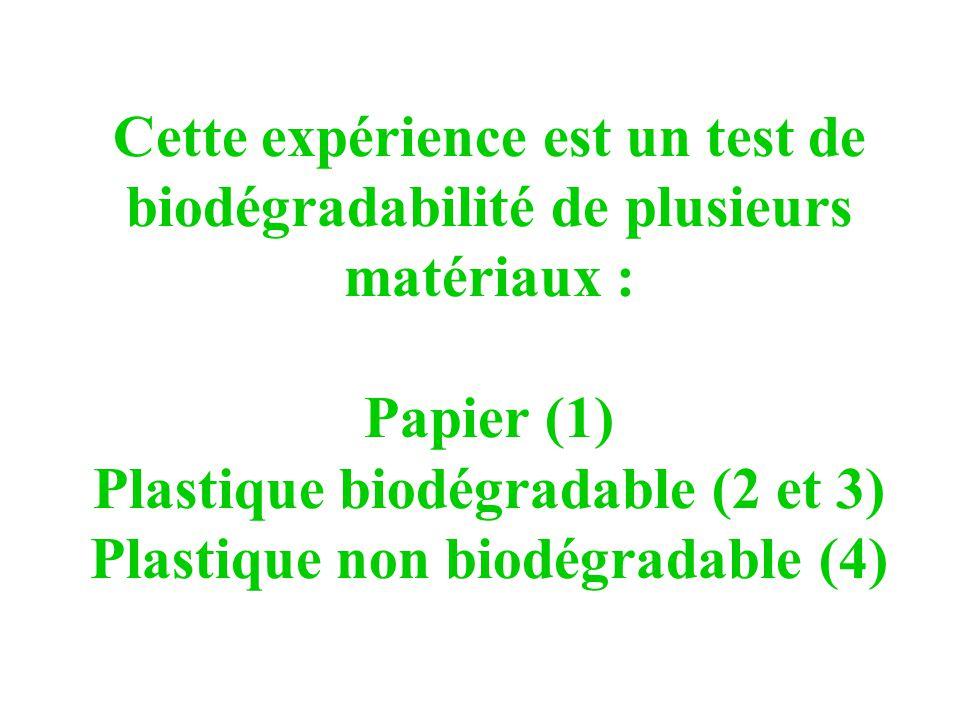 Cette expérience est un test de biodégradabilité de plusieurs matériaux : Papier (1) Plastique biodégradable (2 et 3) Plastique non biodégradable (4)