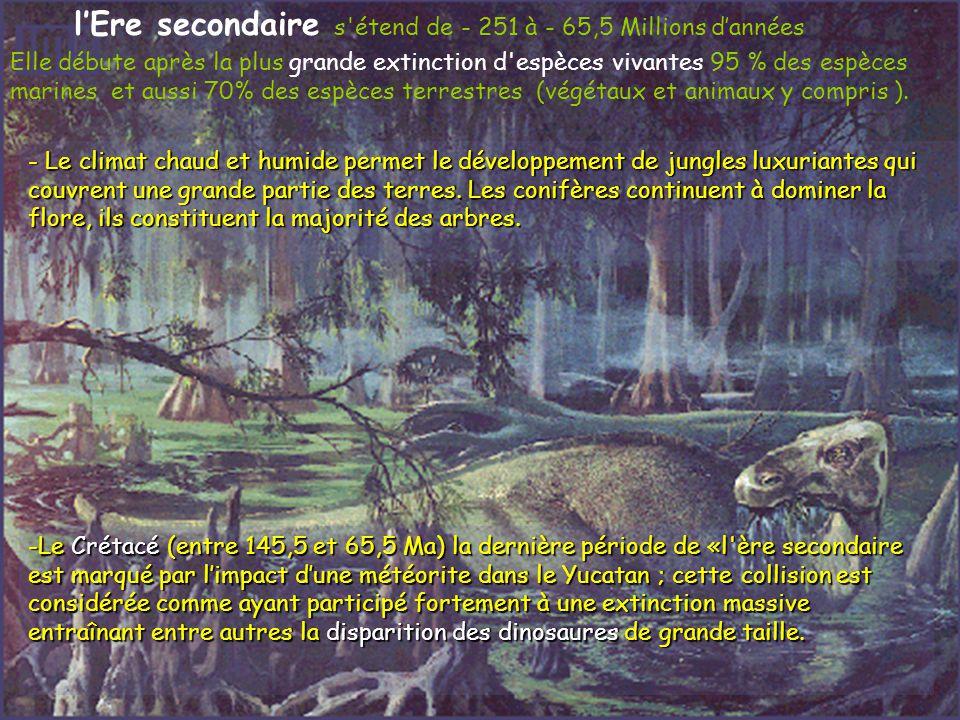l'Ere secondaire s étend de - 251 à - 65,5 Millions d'années