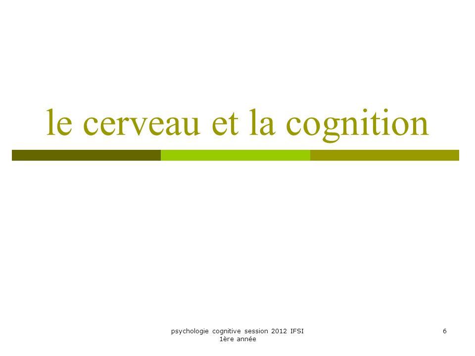 le cerveau et la cognition