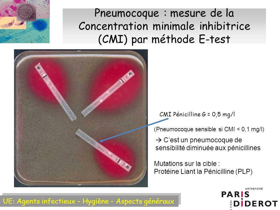 Pneumocoque : mesure de la Concentration minimale inhibitrice (CMI) par méthode E-test