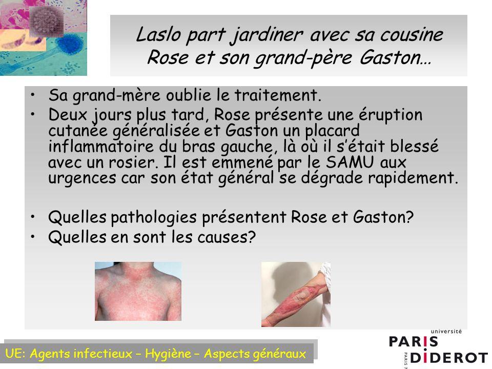 Laslo part jardiner avec sa cousine Rose et son grand-père Gaston…