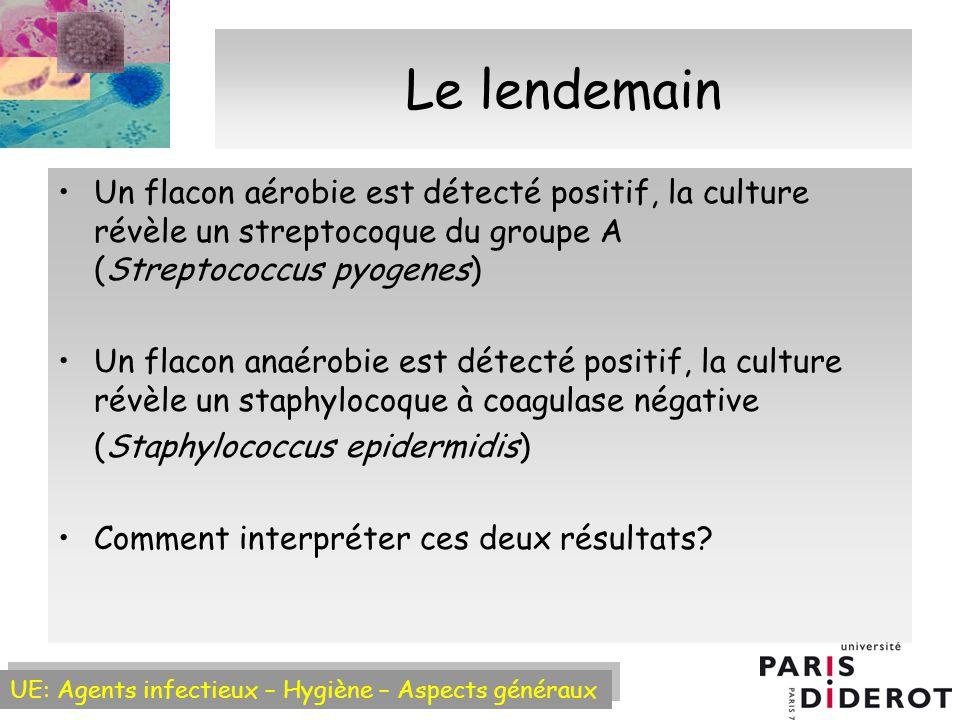 Le lendemain Un flacon aérobie est détecté positif, la culture révèle un streptocoque du groupe A (Streptococcus pyogenes)