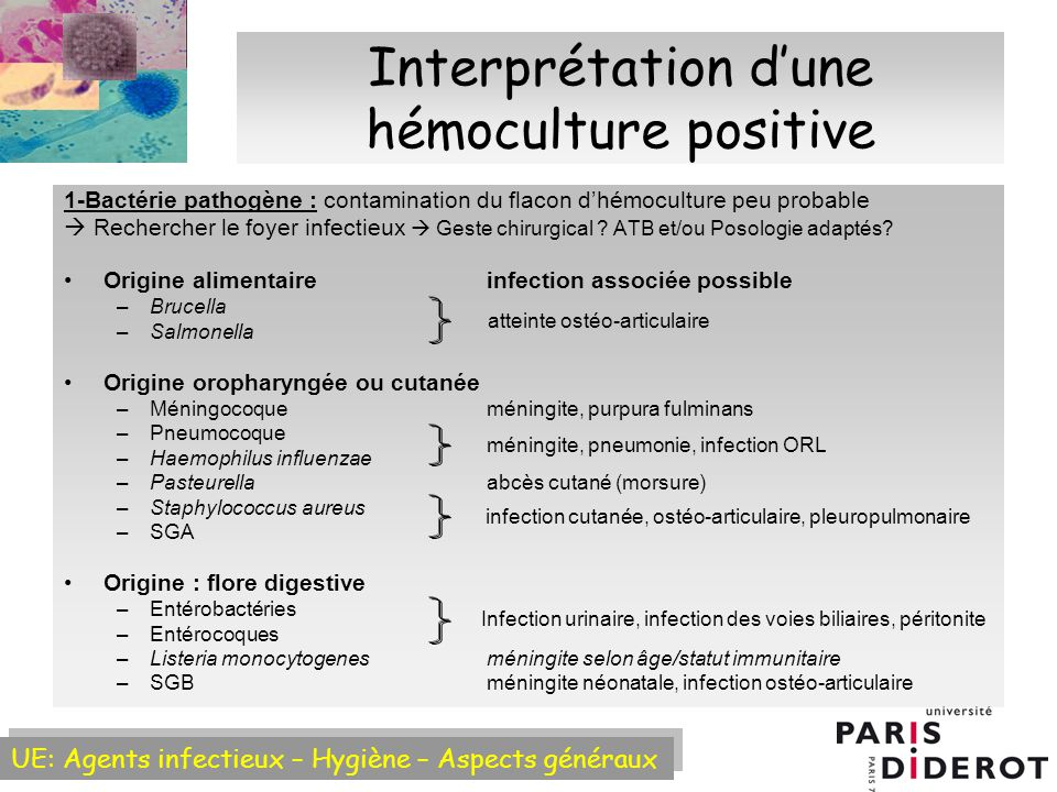 Interprétation d'une hémoculture positive