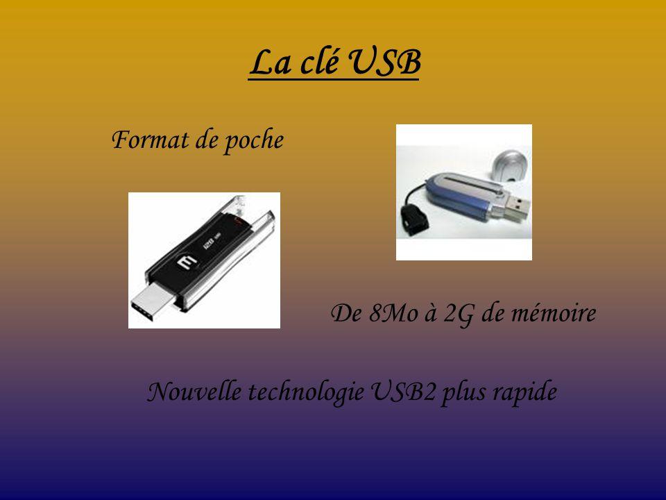La clé USB Format de poche De 8Mo à 2G de mémoire