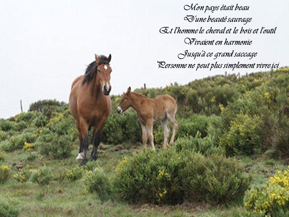 Et l homme le cheval et le bois et l outil Vivaient en harmonie