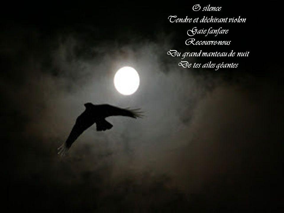 Tendre et déchirant violon Du grand manteau de nuit
