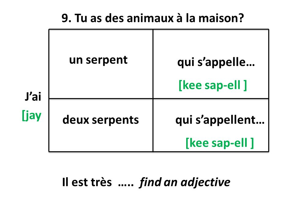 9. Tu as des animaux à la maison
