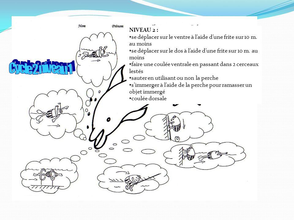 NIVEAU 2 : se déplacer sur le ventre à l'aide d'une frite sur 10 m. au moins. se déplacer sur le dos à l'aide d'une frite sur 10 m. au moins.