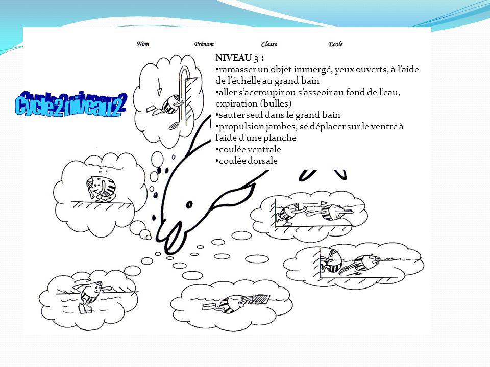 NIVEAU 3 : ramasser un objet immergé, yeux ouverts, à l'aide de l'échelle au grand bain.