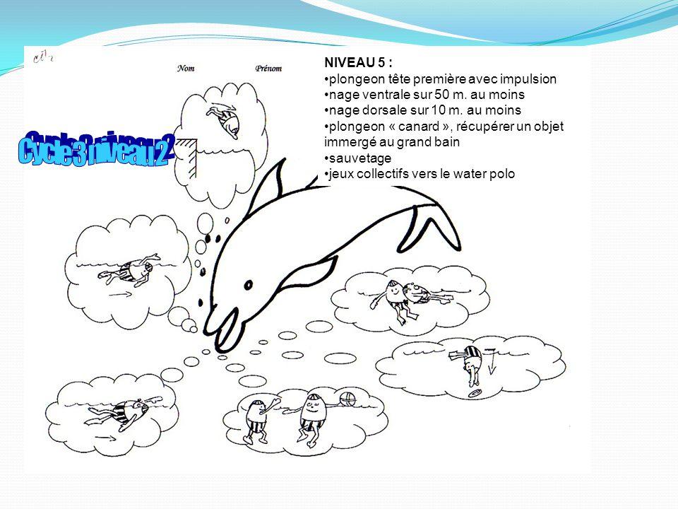 Cycle 3 niveau 2 NIVEAU 5 : plongeon tête première avec impulsion
