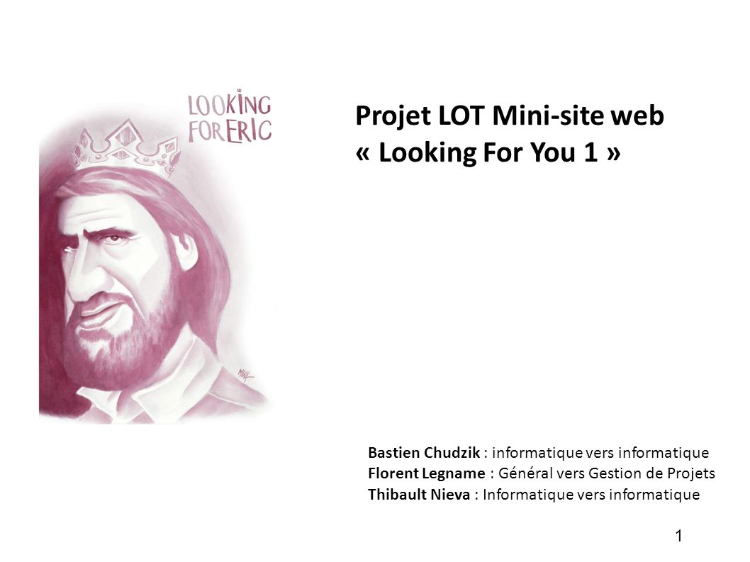 Projet LOT Mini-site web « Looking For You 1 »