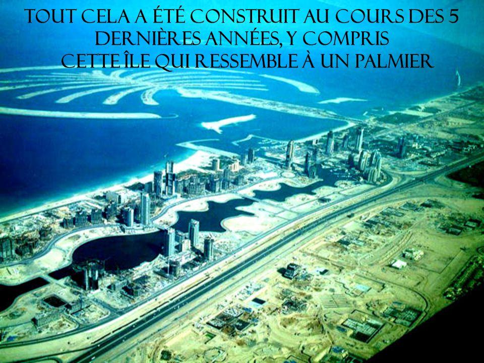 Tout cela a été construit au cours des 5 dernières années, y compris cette île qui ressemble à un palmier
