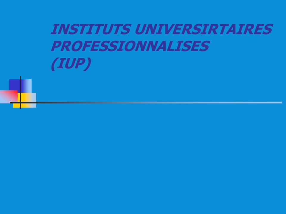 INSTITUTS UNIVERSIRTAIRES PROFESSIONNALISES (IUP)