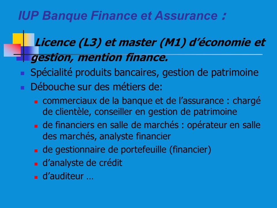 IUP Banque Finance et Assurance :