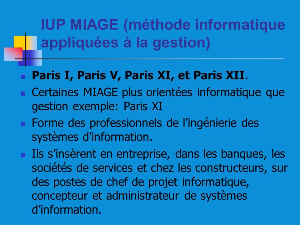 IUP MIAGE (méthode informatique appliquées à la gestion)
