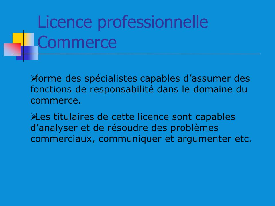 Licence professionnelle Commerce