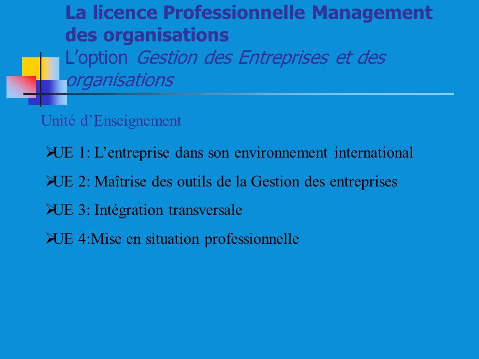 La licence Professionnelle Management des organisations L'option Gestion des Entreprises et des organisations