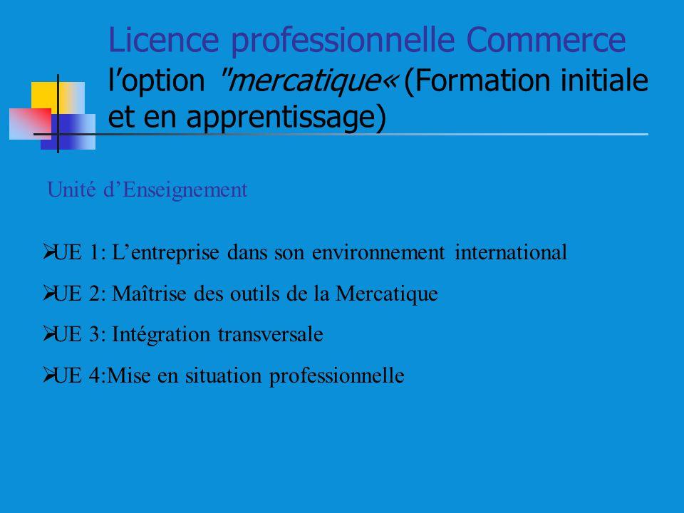 Licence professionnelle Commerce l'option mercatique« (Formation initiale et en apprentissage)