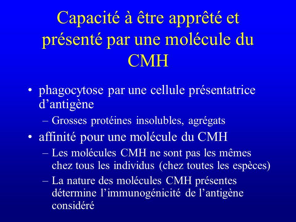 Capacité à être apprêté et présenté par une molécule du CMH