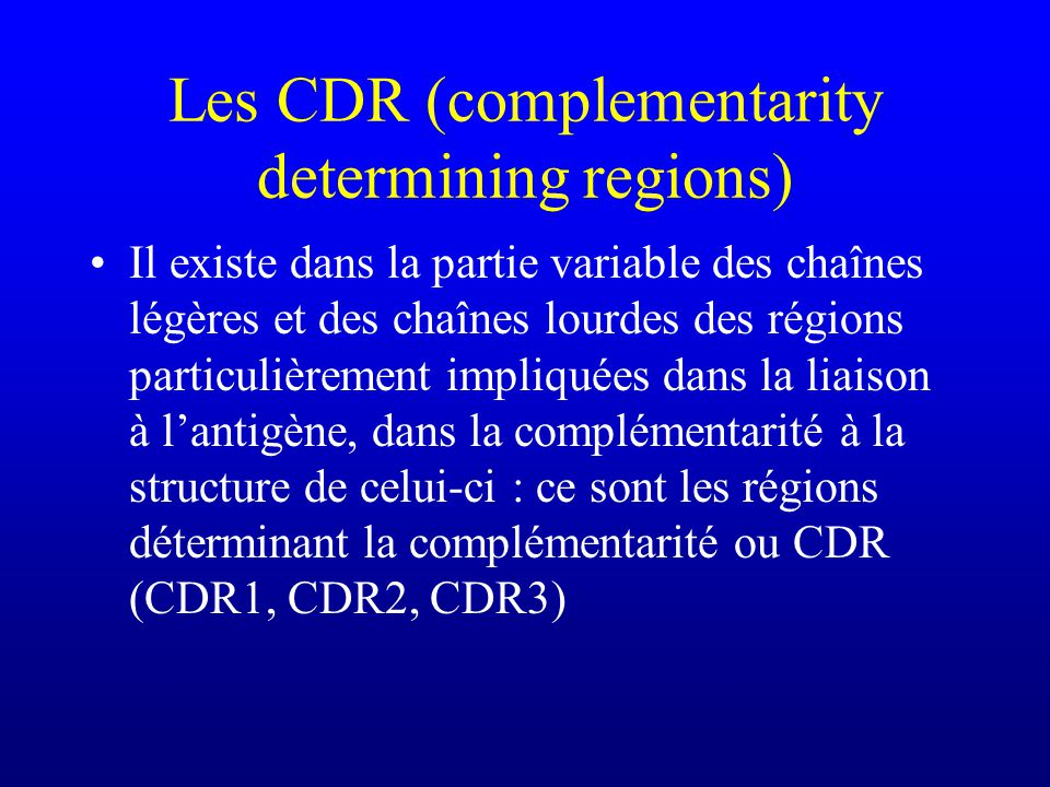 Les CDR (complementarity determining regions)