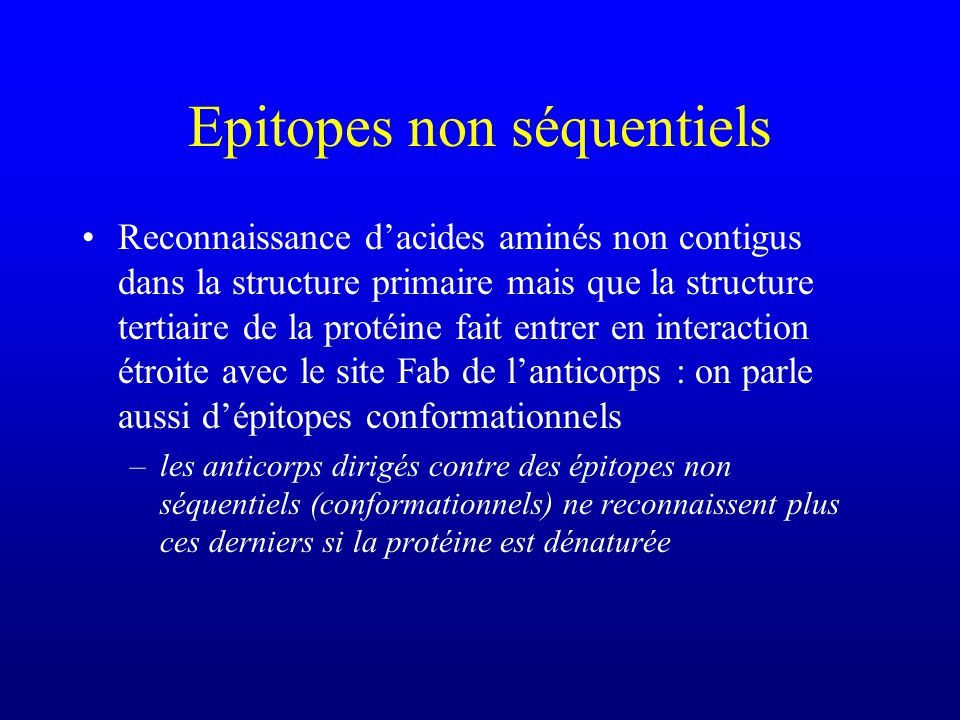 Epitopes non séquentiels