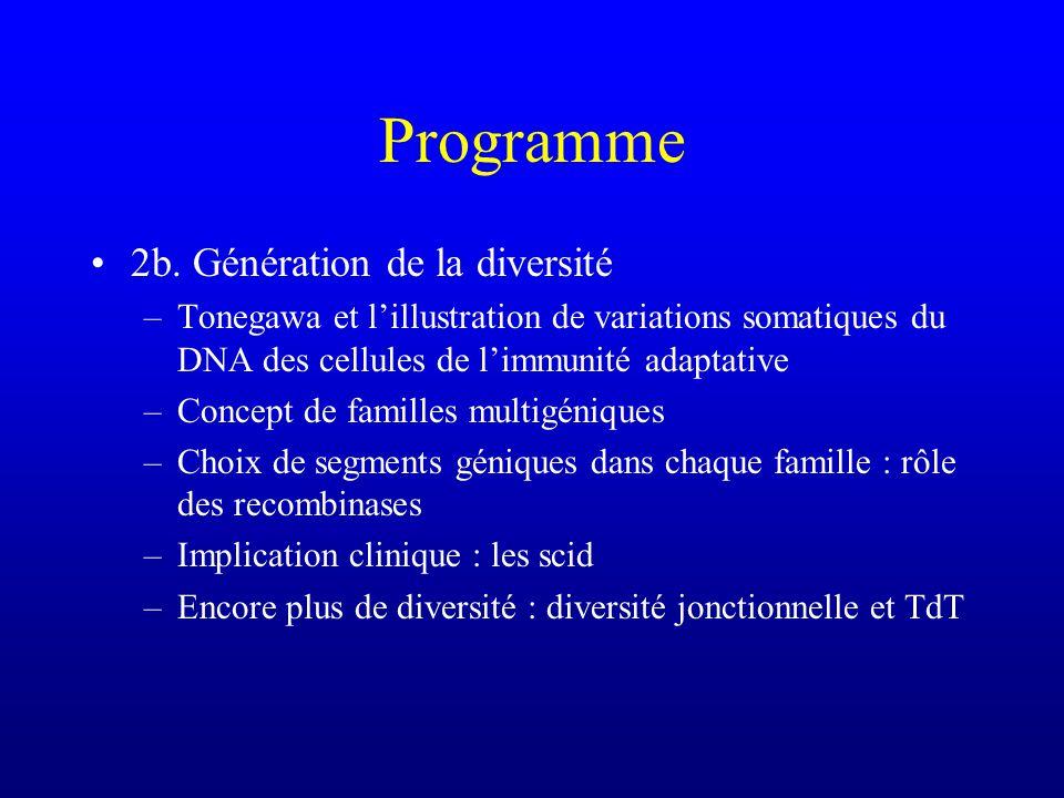 Programme 2b. Génération de la diversité