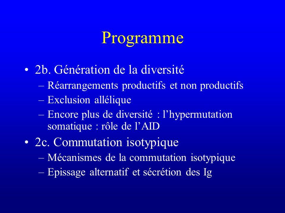 Programme 2b. Génération de la diversité 2c. Commutation isotypique