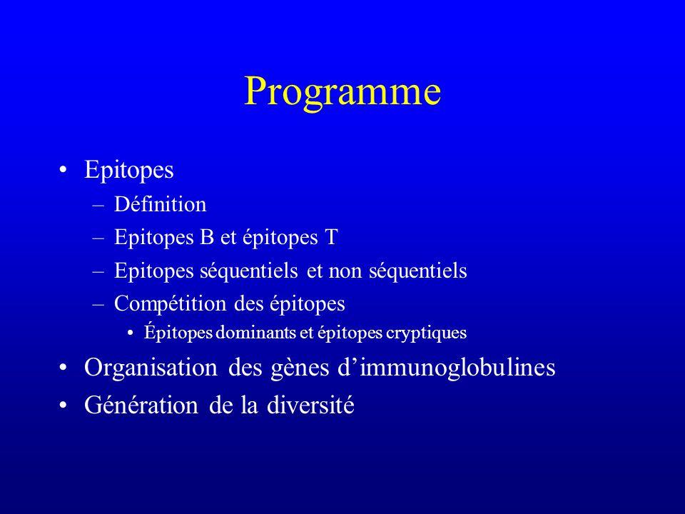 Programme Epitopes Organisation des gènes d'immunoglobulines