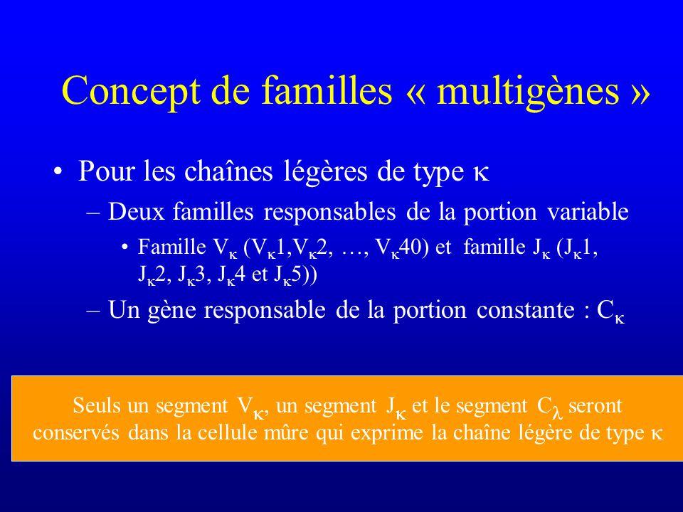 Concept de familles « multigènes »
