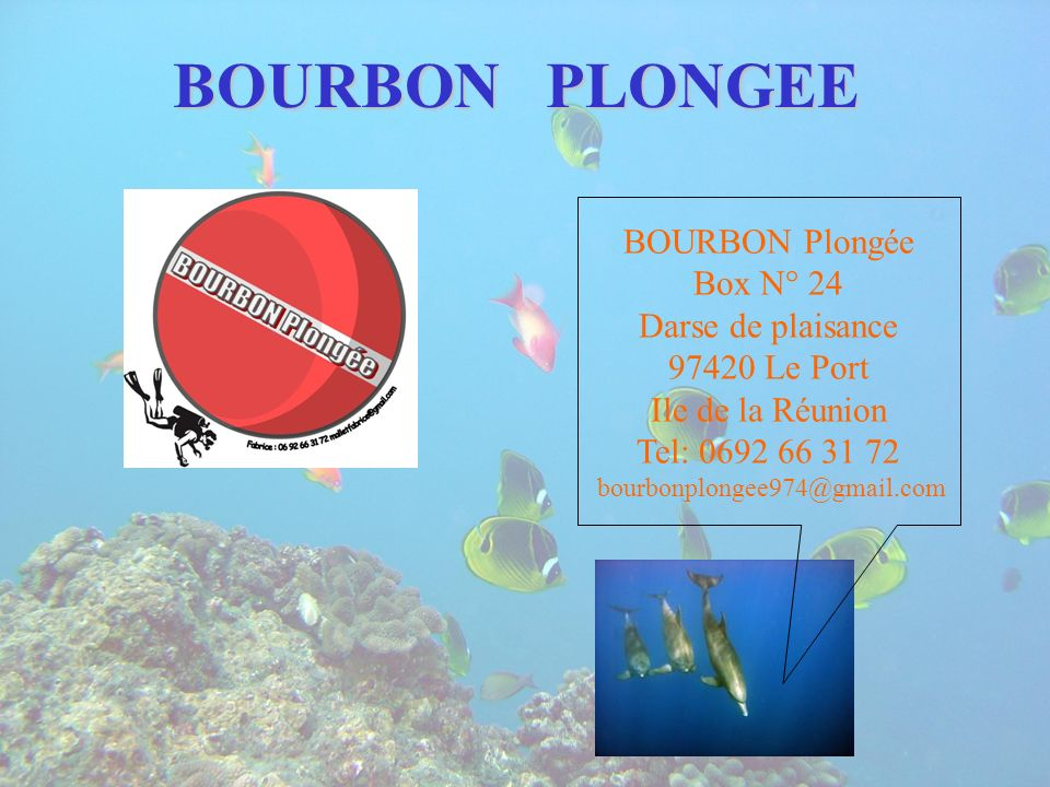 BOURBON PLONGEE BOURBON Plongée Box N° 24 Darse de plaisance