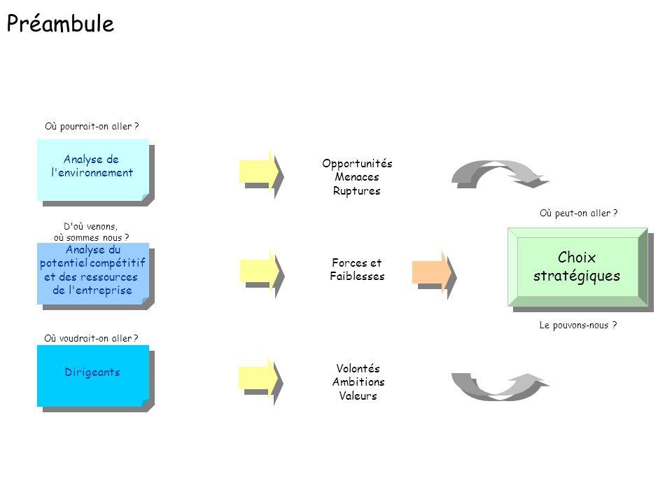 Préambule Choix stratégiques Analyse de l environnement Opportunités