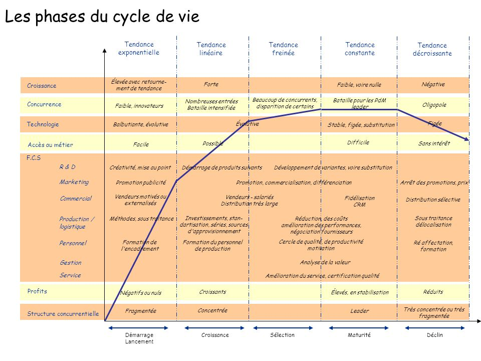 Les phases du cycle de vie