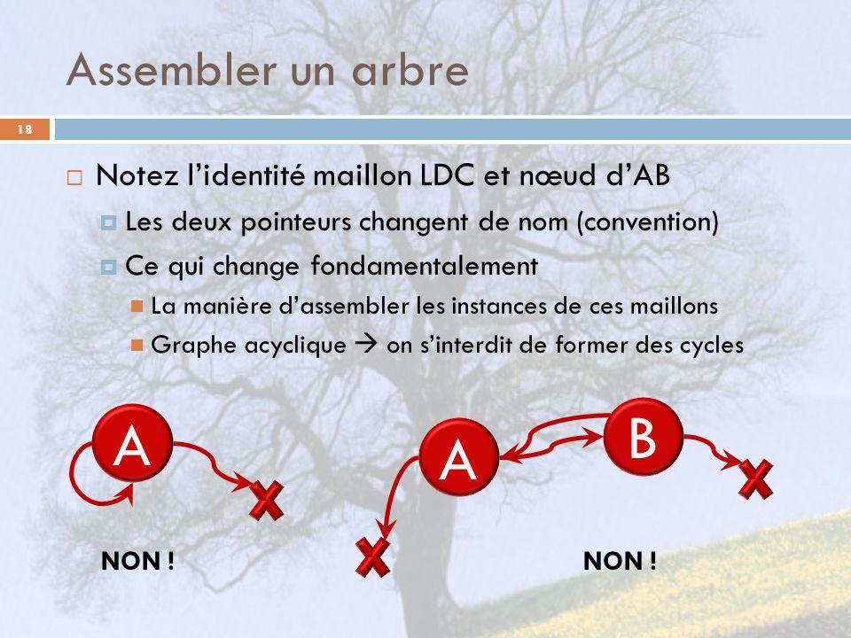 B A A Assembler un arbre Notez l'identité maillon LDC et nœud d'AB