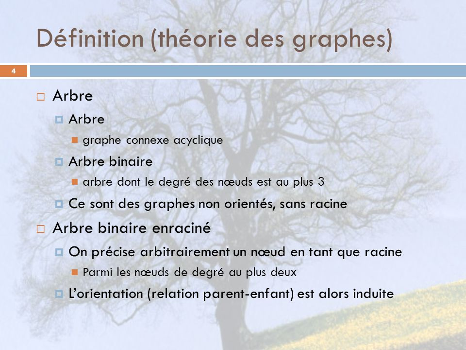 Définition (théorie des graphes)