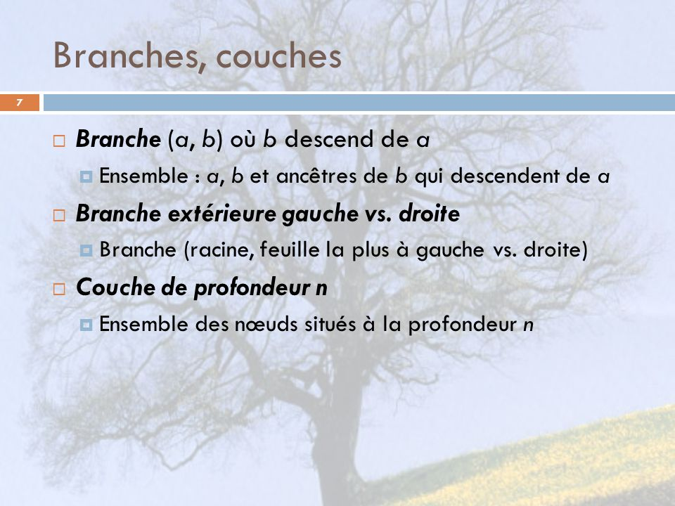 Branches, couches Branche (a, b) où b descend de a