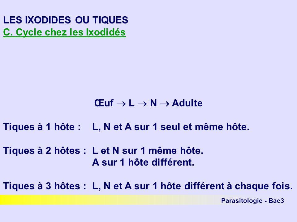 C. Cycle chez les Ixodidés