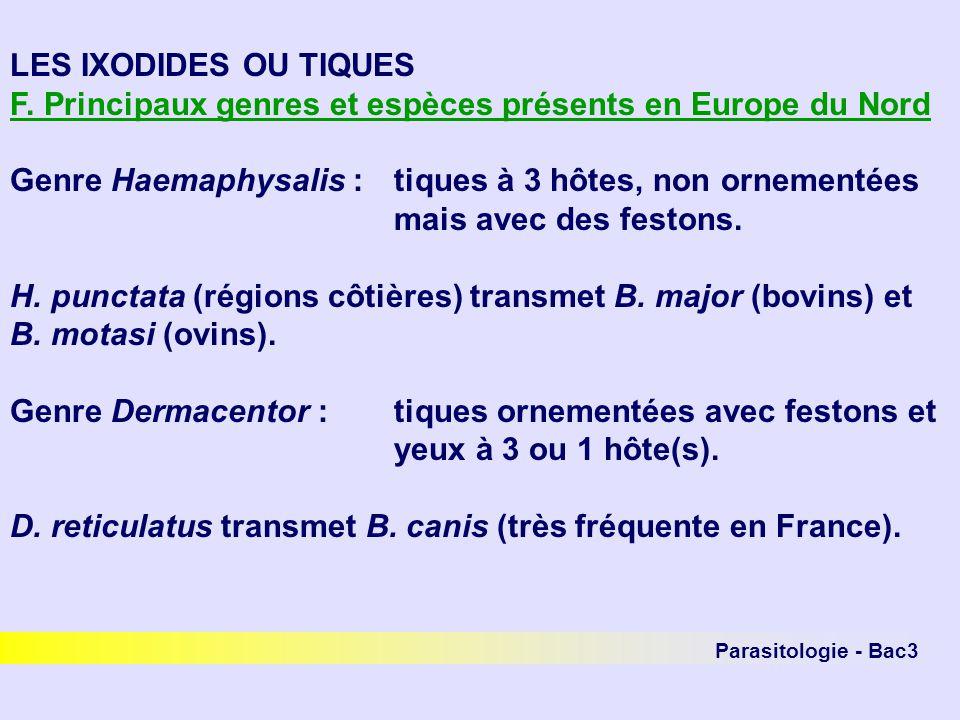 F. Principaux genres et espèces présents en Europe du Nord