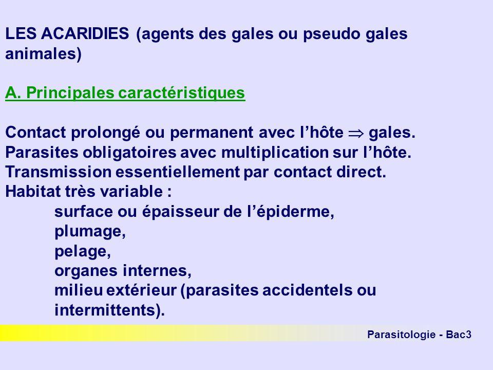 LES ACARIDIES (agents des gales ou pseudo gales animales)