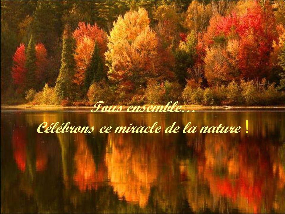 Tous ensemble… Célébrons ce miracle de la nature !