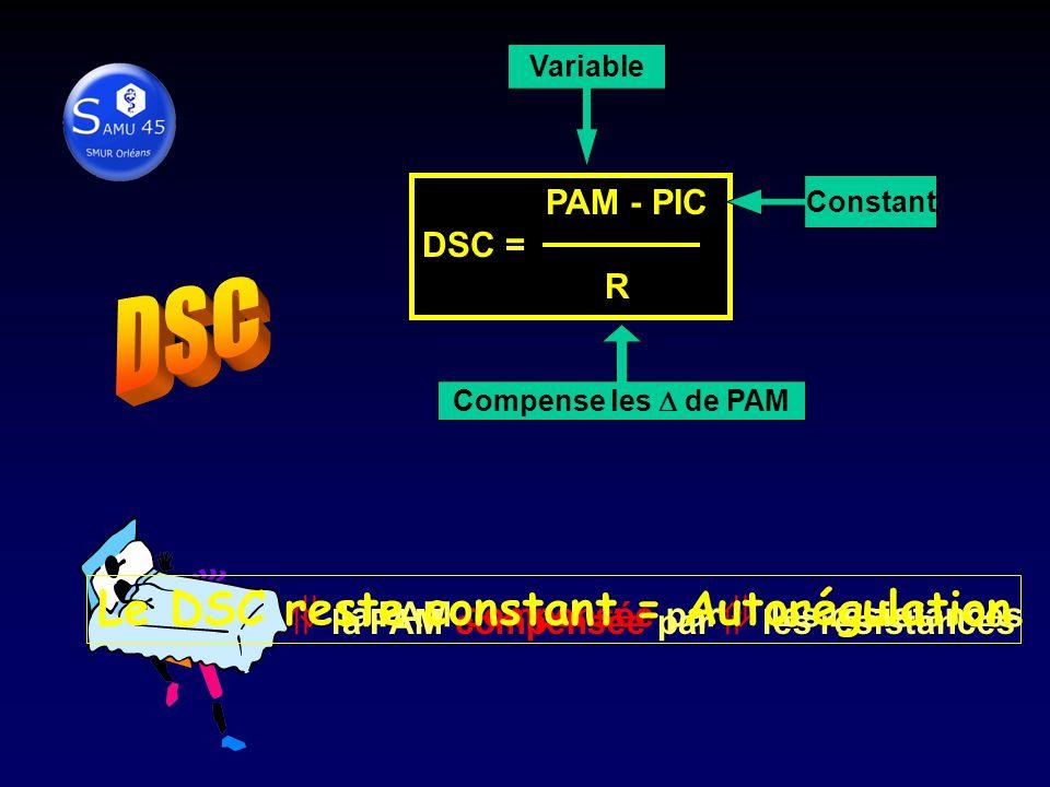 DSC Le DSC reste constant = Autorégulation DSC = PAM - PIC DSC = R