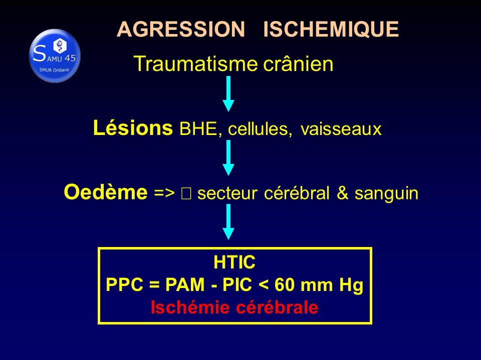 Lésions BHE, cellules, vaisseaux