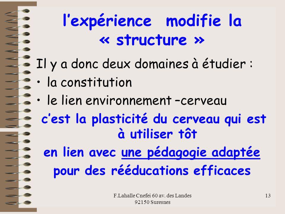 l'expérience modifie la « structure »