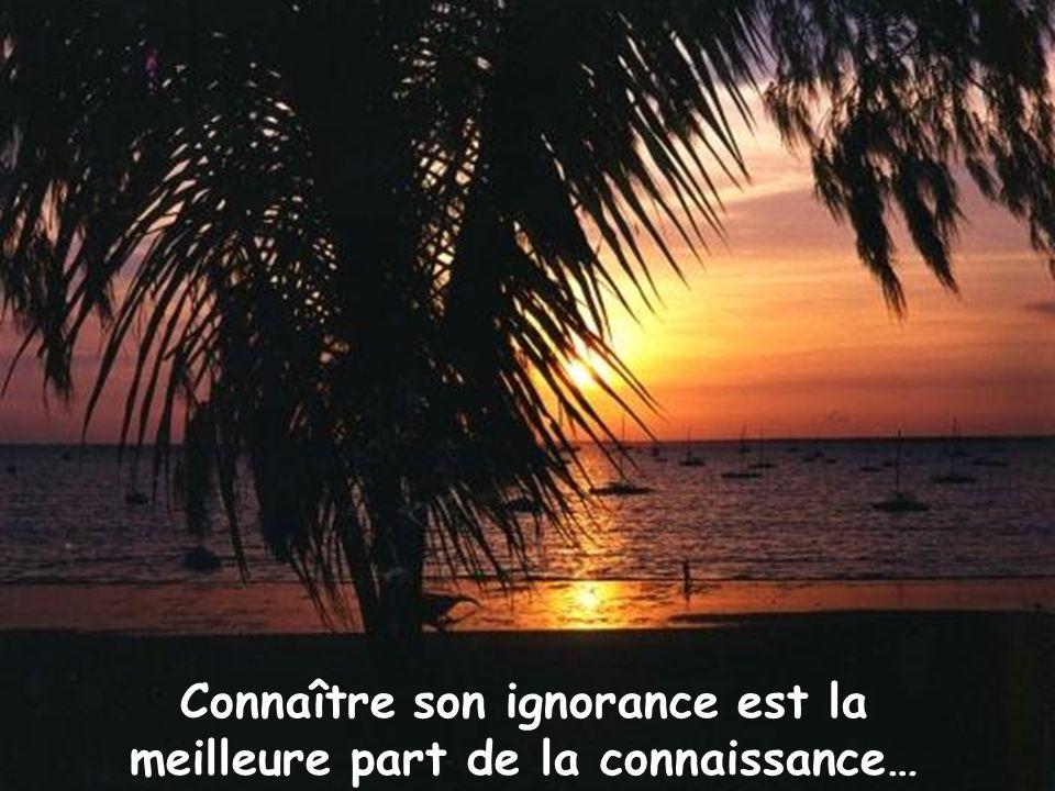 Connaître son ignorance est la meilleure part de la connaissance…