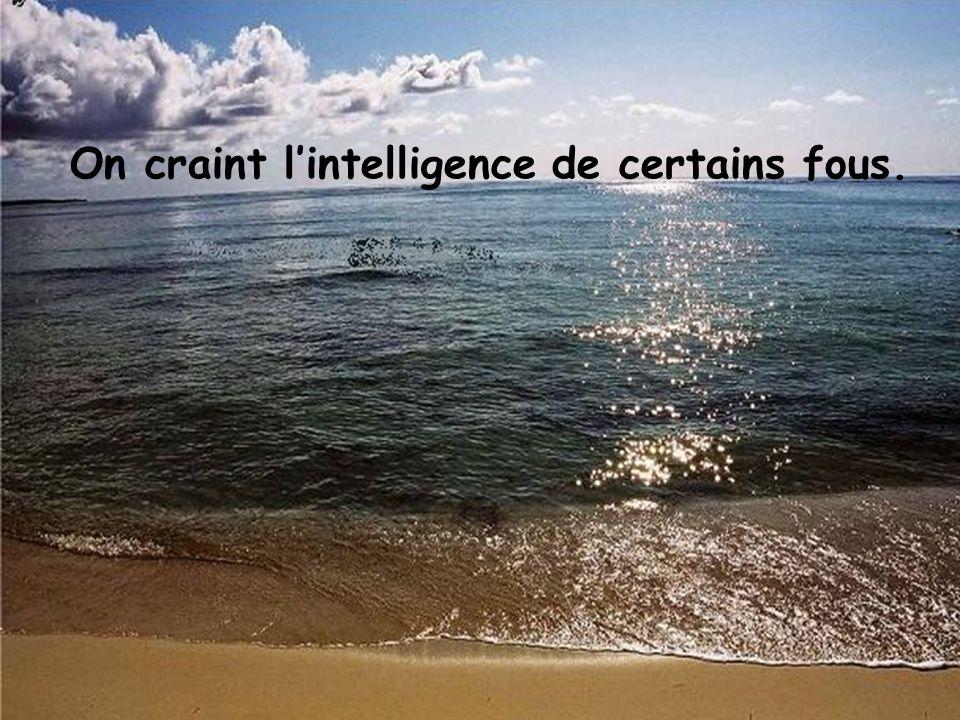 On craint l'intelligence de certains fous.