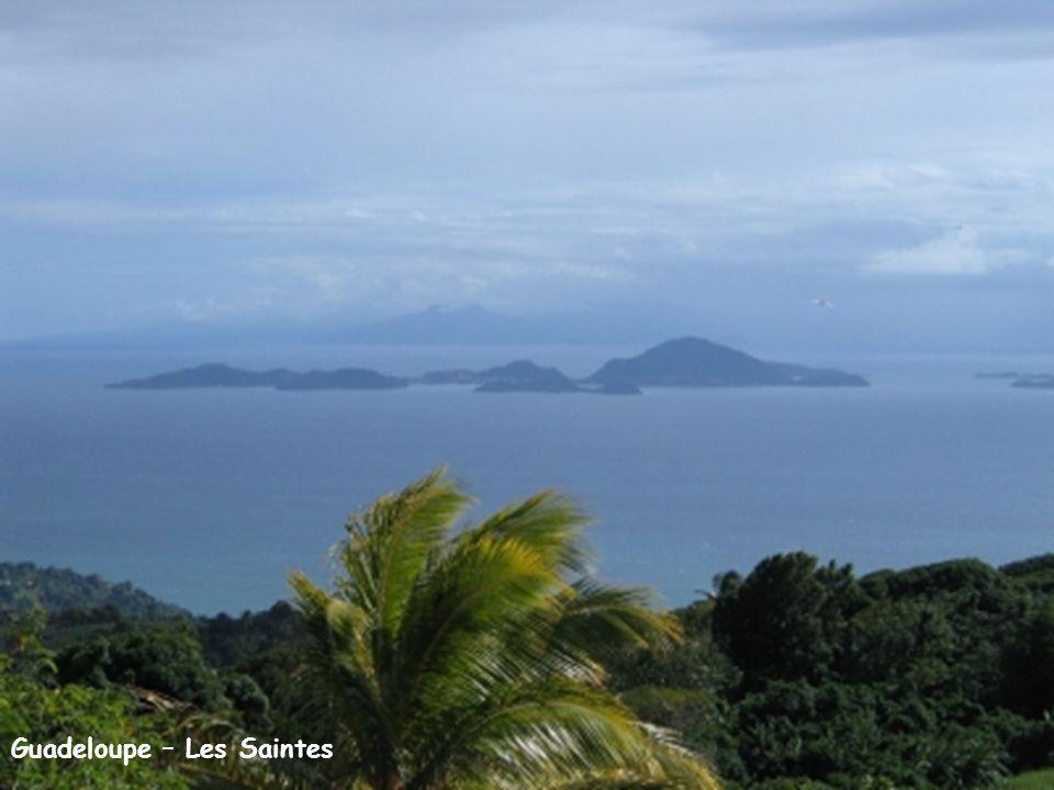 Guadeloupe – Les Saintes