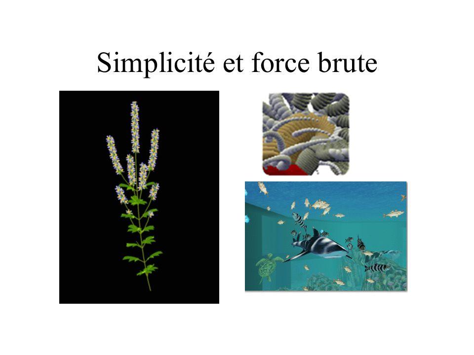 Simplicité et force brute