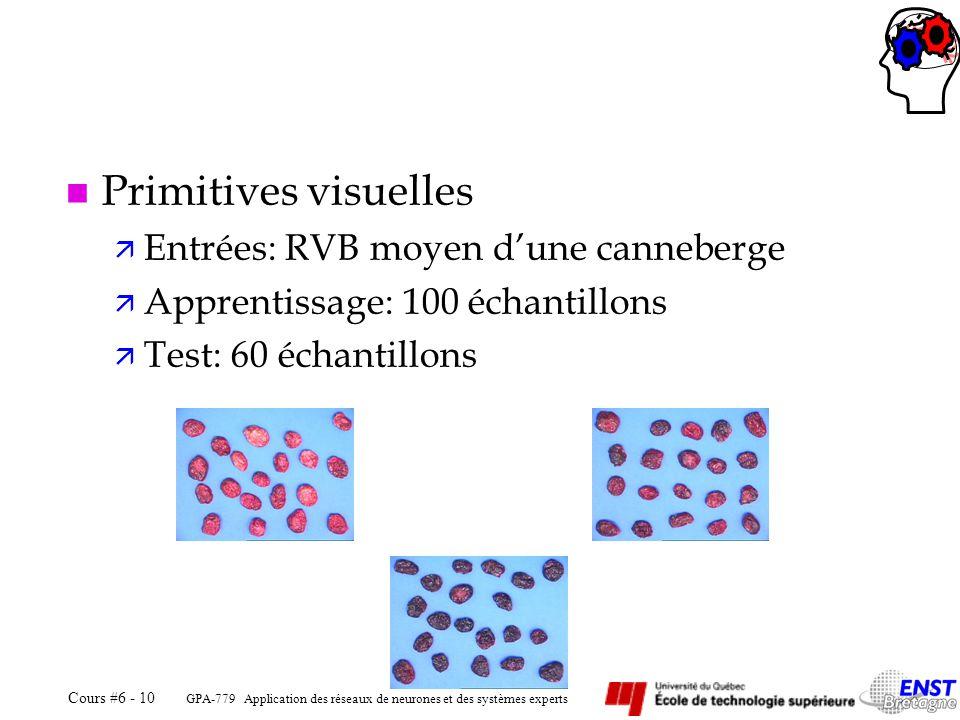 Primitives visuelles Entrées: RVB moyen d'une canneberge