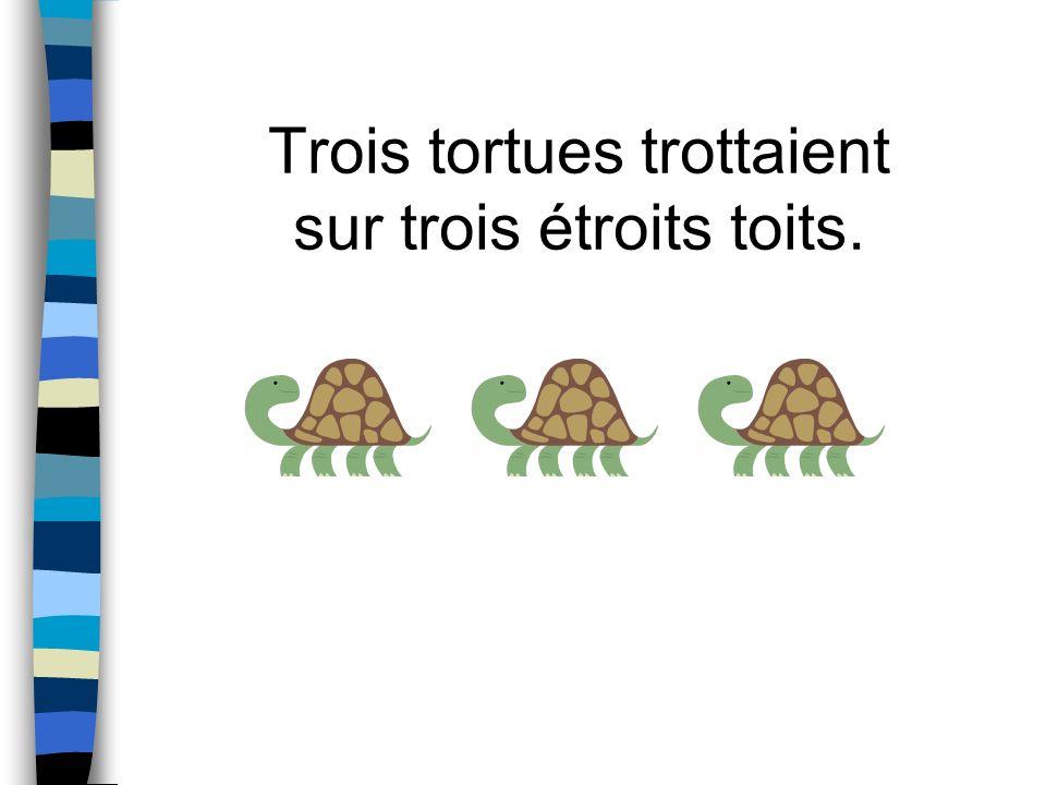 Trois tortues trottaient sur trois étroits toits.